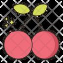 Cherry Fruit Fesh Fruit Icon