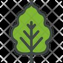Cherry Leaf Nature Icon