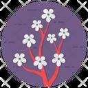 Cherry Blossom Flower Sakura Icon