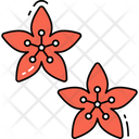 Cherry Blossom Flower Icon