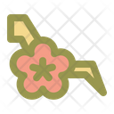 Cherry Blossom Tree Icon