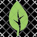 Cherry Leaf Icon