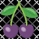 Cherry Plum Purple Icon