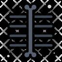 Chest Ray Skeleton Xray Icon