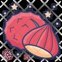 Chestnut Edible Nut Dry Fruit Icon
