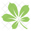 Chestnut Plant Tree Icon