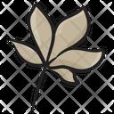 Chestnut Leaf Foliate Nature Icon