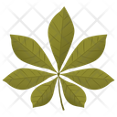 Chestnut Leaf Icon