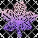 Chestnut Leaf Icon
