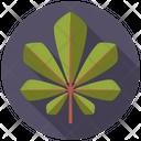 Chestnut Tree Nature Icon