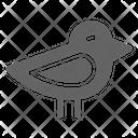 Chick Bird Chicken Icon