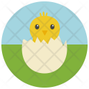 Chick Hatching Egg Icon