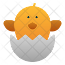 Chick Egg Spring Icon