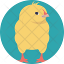 Chick Young Bird Icon