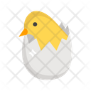 Chick Hatched Chick Birth Eggshell Icon