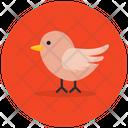 Chick Creature Bird Icon