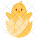 Chick In Egg Icon
