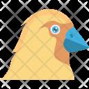 Chicken Hen Food Icon