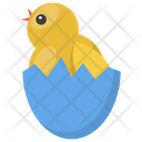 Chicken Hatching Poultry Easter Chick Icon