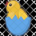 Chicken Hatching Icon