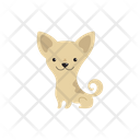 Chihuahua Dog Icon