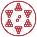 Chinese Checkers Table Games Checkers Icon