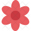 Chinese Flower Flower Ecology Icon