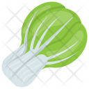 Chinese Cabbage Leaves Icon