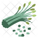 Fresh Chives Leaf Icon