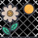 Chlorophyll Icon