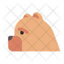 Chow China Canine Icon