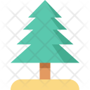 Christmas Tree Evergreen Icon