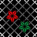 Color Star Christmas Icon