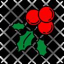 Color Mistletoe Christmas Icon