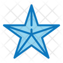 Star Christmas Snow Icon