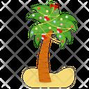 Christmas Tree Palm Tree Palm Icon