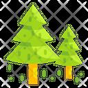 Christmas Tree Pine Tree Icon