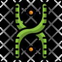 Chromosome Dna Icon
