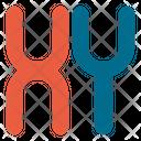 Chromosomes Dna Genes Icon