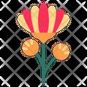 Chrysanthemum Icon