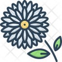 Chrysanthemum Daisy Marguerite Icon