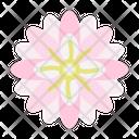 Chrysanthemum Wild Flower Farming And Gardening Icon