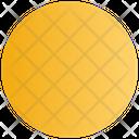 Sign Circle Record Icon