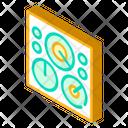 Circular Field Icon