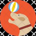 Circus Dog Icon