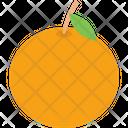 Citrus Food Fruit Icon