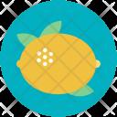 Citrus Fruit Food Icon