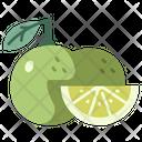 Fruit Vegan Citrus Icon