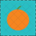 Citrus Orange Fruit Icon