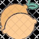 Citrus fruit Icon